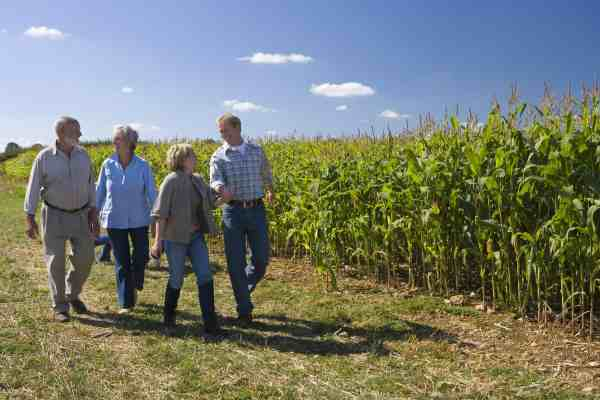 Famille d'agricultreurs et salaire differe