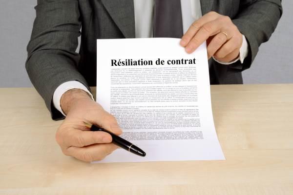 Resiliation Du Bail Rural A L Initiative Du Bailleur Juridique Cgo Comptabilite Gestion Ocean
